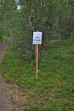 Noch 5 Kilometer bis ins Ziel: Harte Kilometer und mehr als zwei Stunden!